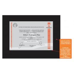 Diplomas em Aço Escovado Base de Acrilico ou Aveludada